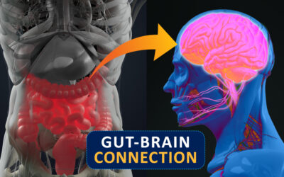 Gut and Brain Health – Interview with Leah From Freedom and Coffee
